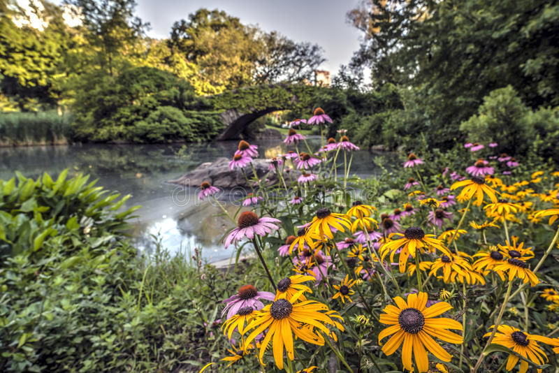 Gapstow Brücke Central Park, New York City lizenzfreie stockfotografie