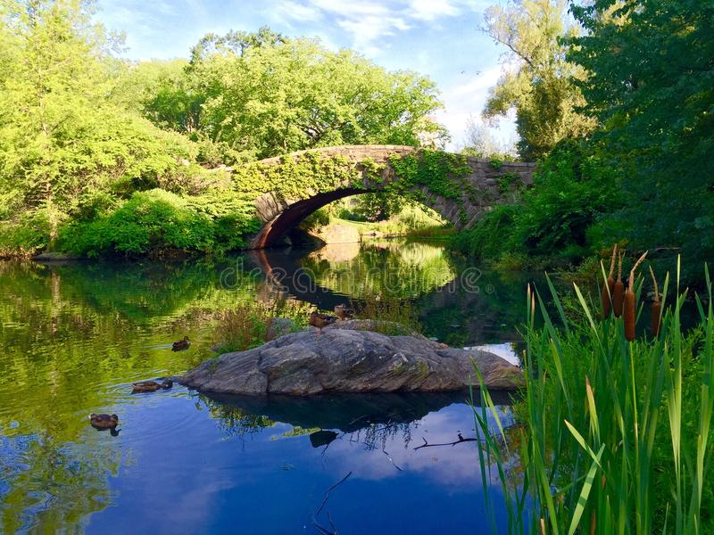 Gapstow Brücke Central Park New York City lizenzfreie stockfotos