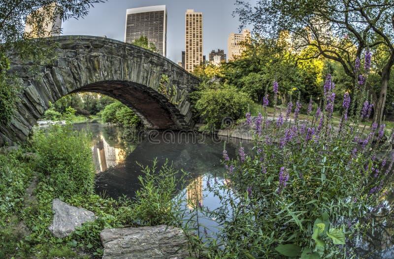 Gapstow bro Central Park, New York City arkivfoto