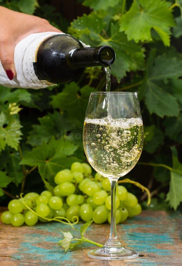 Garçom que derrama um vidro do vinho branco gelado, terraço exterior, foto de stock royalty free