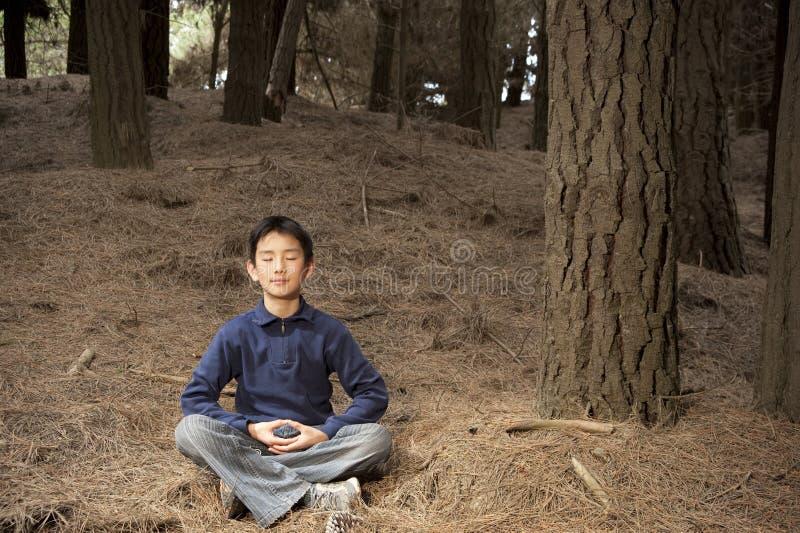 Garçon asiatique méditant dans la forêt de pin images libres de droits