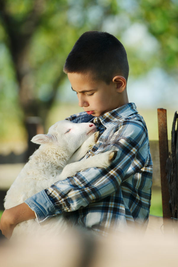 Garçon avec l'agneau à la ferme image stock