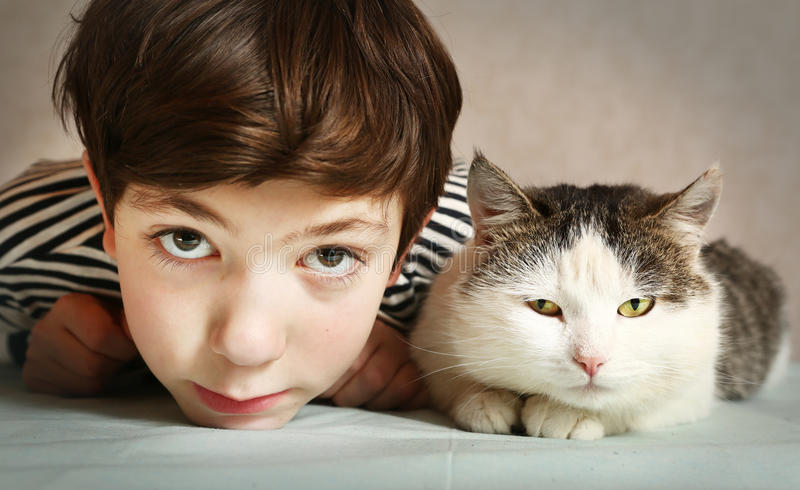 Garçon avec la fin de chat de Tom de Sibérien vers le haut du portrait photographie stock libre de droits