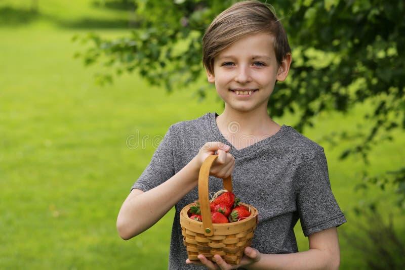 Garçon avec la fraise organique images stock