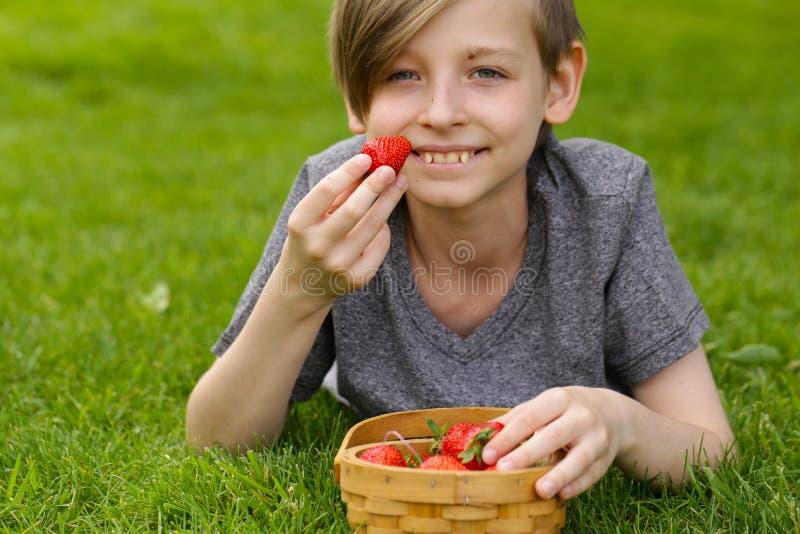 Garçon avec la fraise organique photos stock