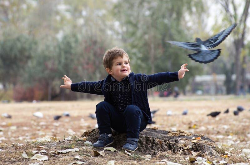 Garçon avec le pigeon images stock