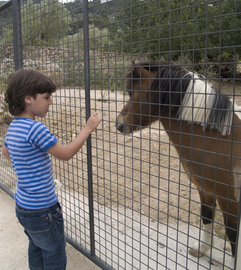 Garçon avec le poney photo libre de droits