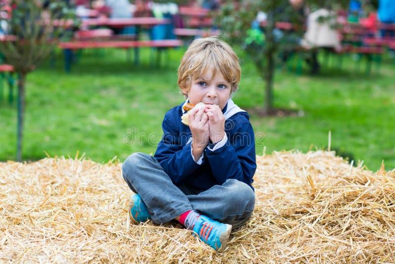 Garçon blond adorable d'enfant mangeant le hot-dog dehors photo libre de droits