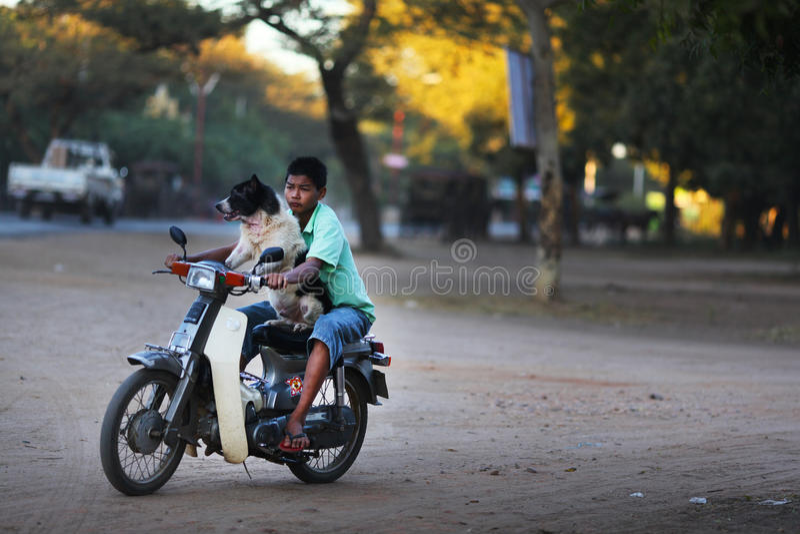 Garçon conduisant une moto avec son chien dans Bago, Myanmar photographie stock