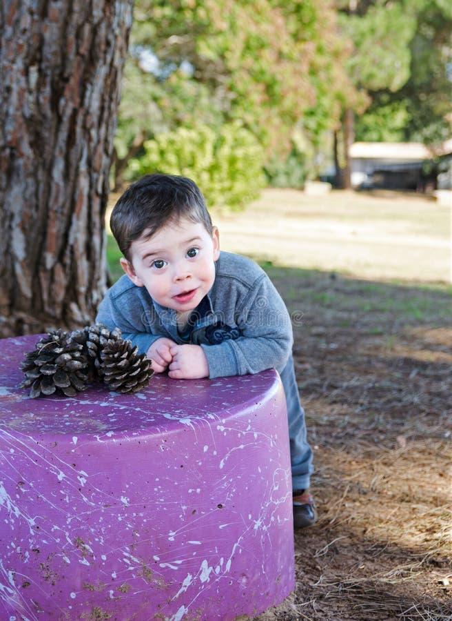 Garçon d'enfant en bas âge avec un cône de pin photographie stock