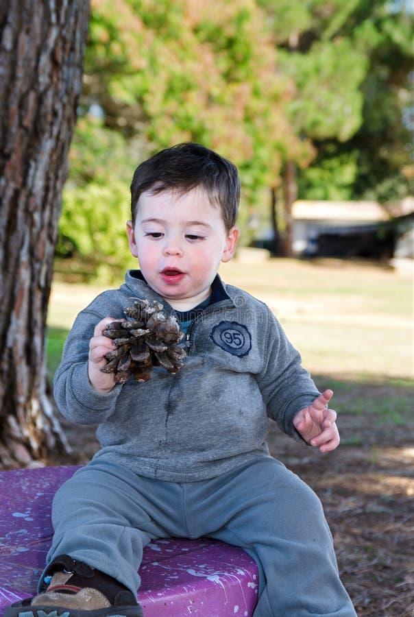 Garçon d'enfant en bas âge et un cône de pin photos stock