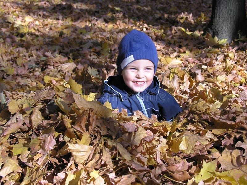 Garçon dans des lames d'automne d'érable photo libre de droits