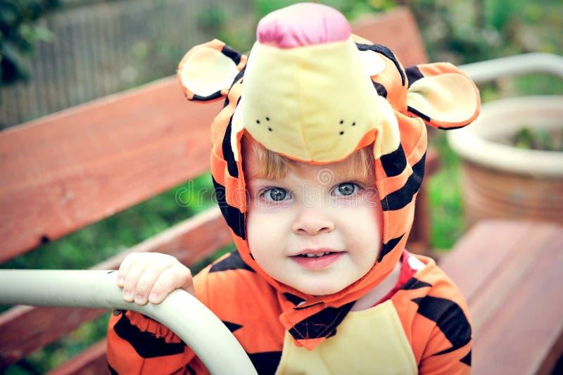 Garçon dans le costume de tigre images libres de droits