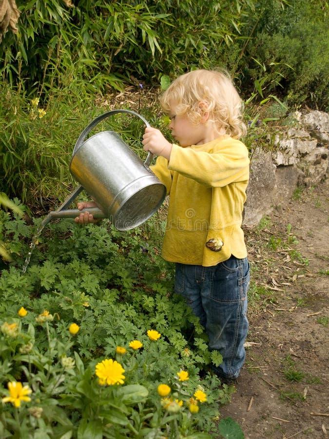 Garçon dans le jardin image libre de droits