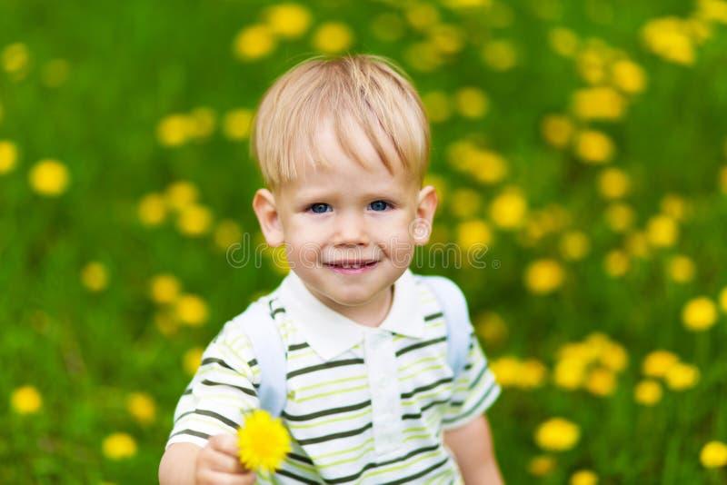 Garçon de sourire dans le pré de pissenlit photo libre de droits