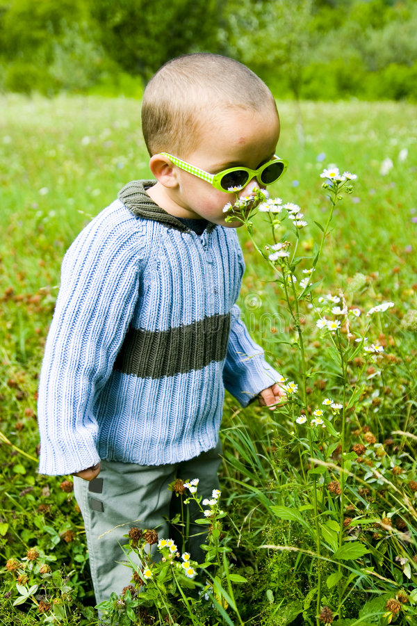 Garçon en nature photo libre de droits