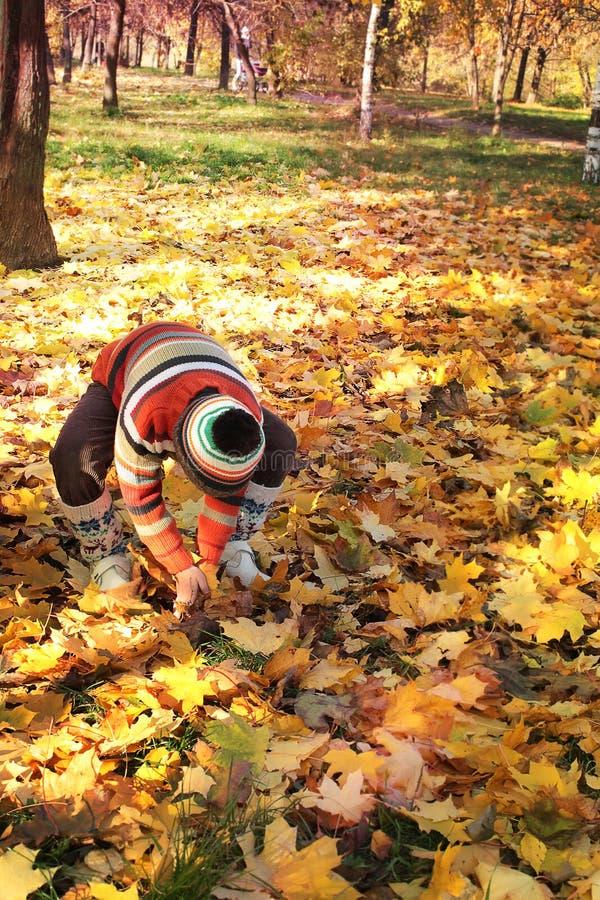 Garçon en stationnement d'automne photos stock