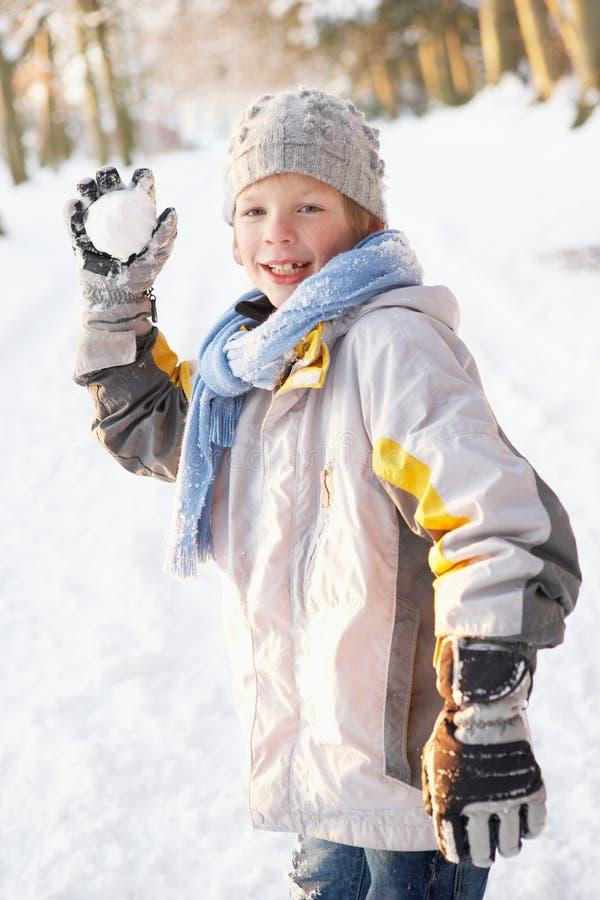 Garçon environ pour projeter la boule de neige dans la régfion boisée de Milou photographie stock libre de droits