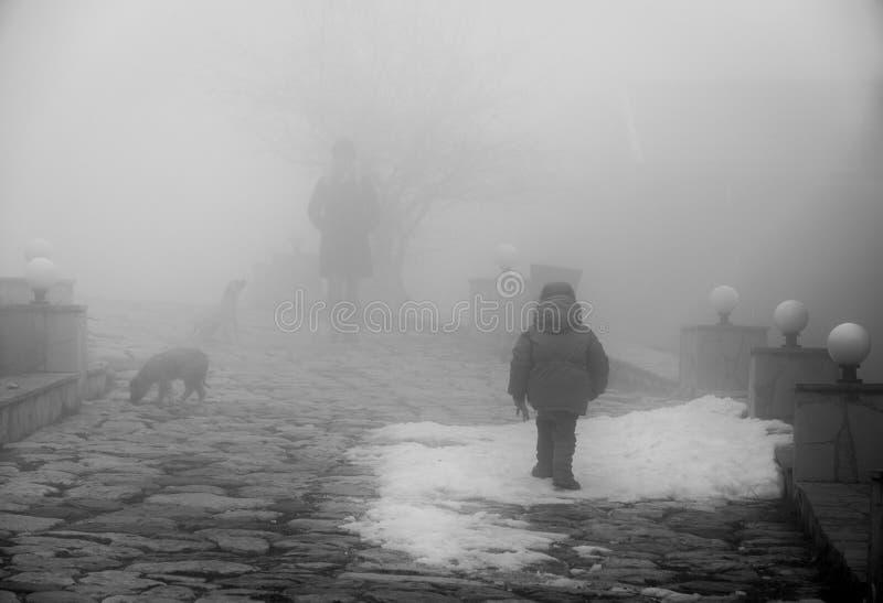 Garçon et chien sur la route rurale dans le jour brumeux pluvieux Petit garçon avec peu de chien marchant sur la rue images stock