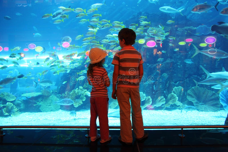 Garçon et fille dans le tunnel sous-marin d'aquarium photographie stock libre de droits