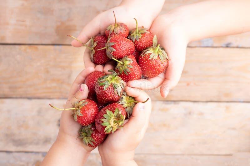 Garçon et fille tenant des fraises dans des mains d'enfants, vue supérieure photo stock