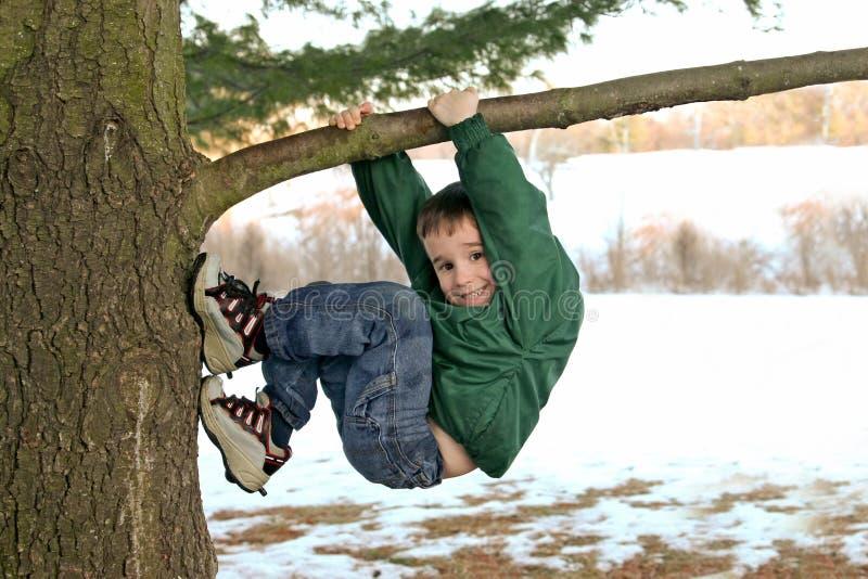 Garçon grimpant à un arbre en hiver images stock