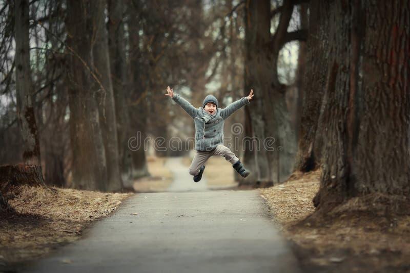 Garçon heureux photo libre de droits