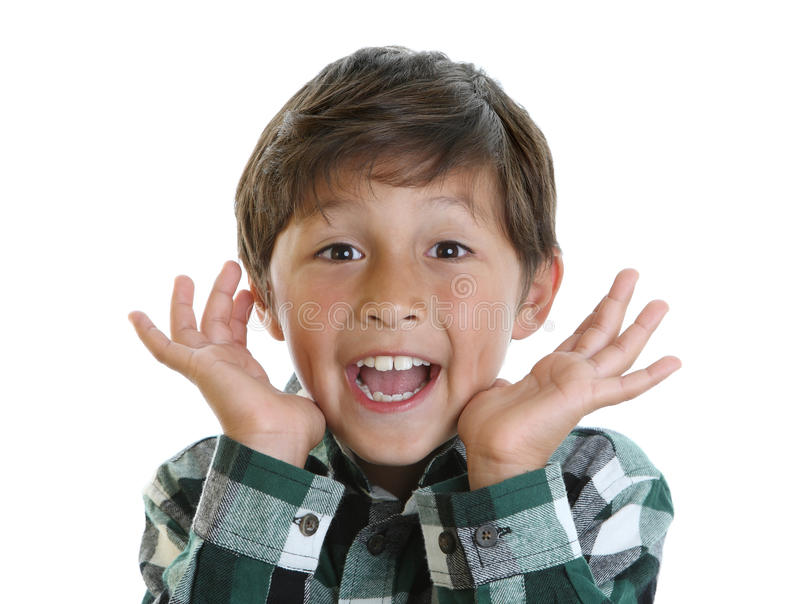 Garçon heureux dans la chemise de plaid photo libre de droits