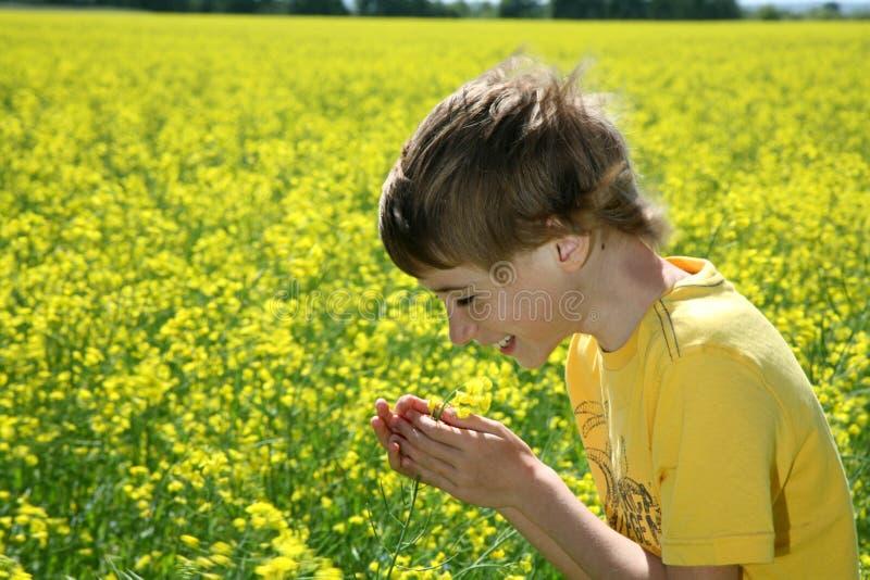 Garçon heureux dans le domaine de graine de colza photo stock