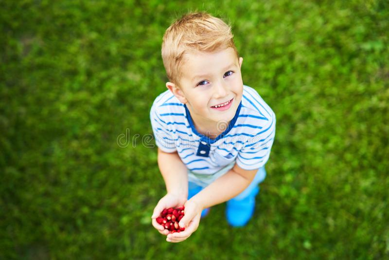 Garçon heureux de 3 ans ayant l'amusement tenant de petites fraises images stock
