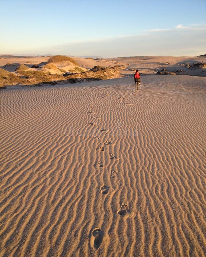 Garçon marchant à travers la dune de sable photo stock