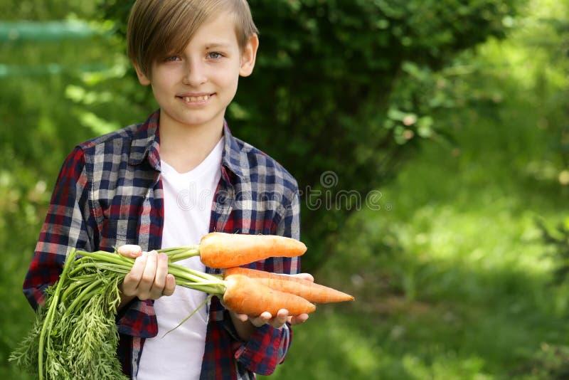 Garçon mignon avec les carottes organiques photos libres de droits