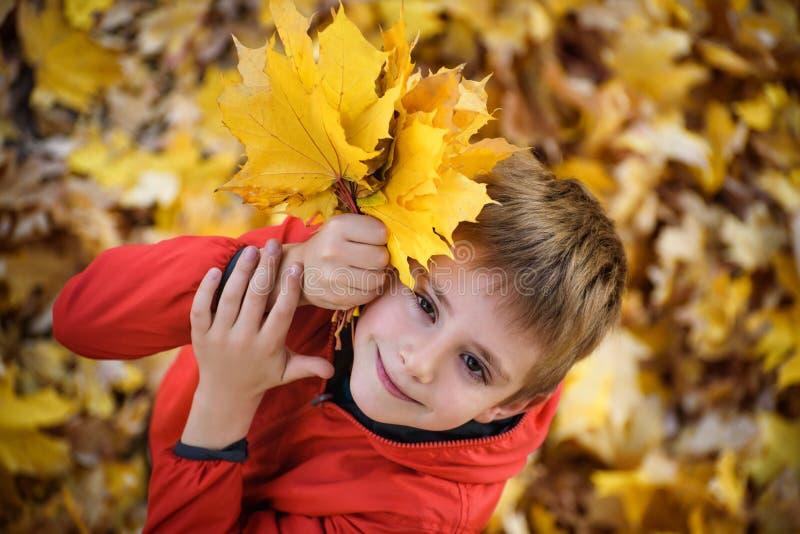 Garçon mignon avec un bouquet des supports et des regards de feuilles d'automne  Vue sup?rieure Concept d'automne image stock