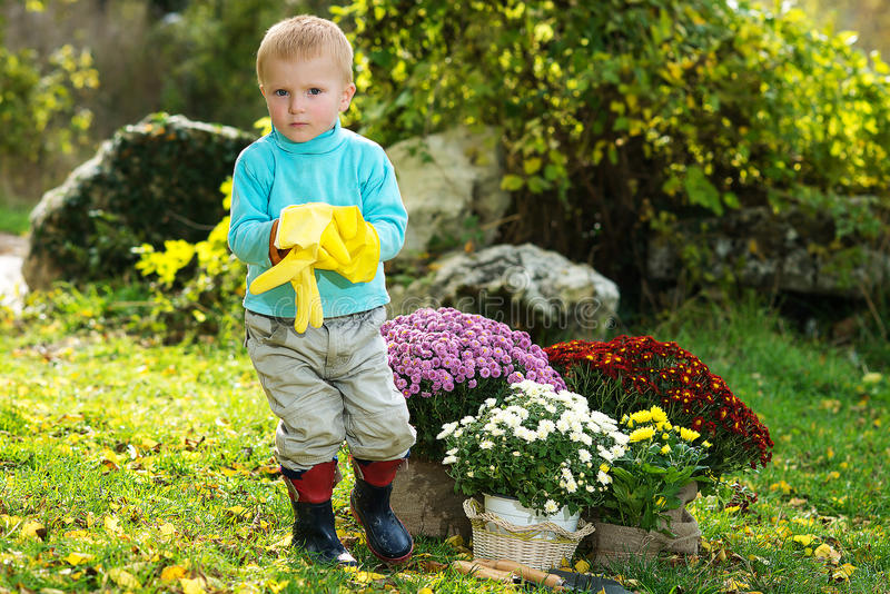 Garçon plantant des fleurs photographie stock libre de droits