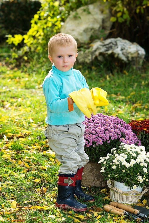 Garçon plantant des fleurs images libres de droits