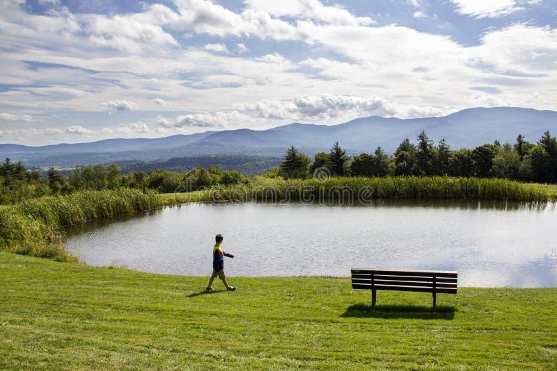 Garçon regardant un étang photos libres de droits