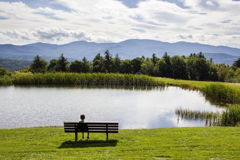 Garçon regardant un étang images stock