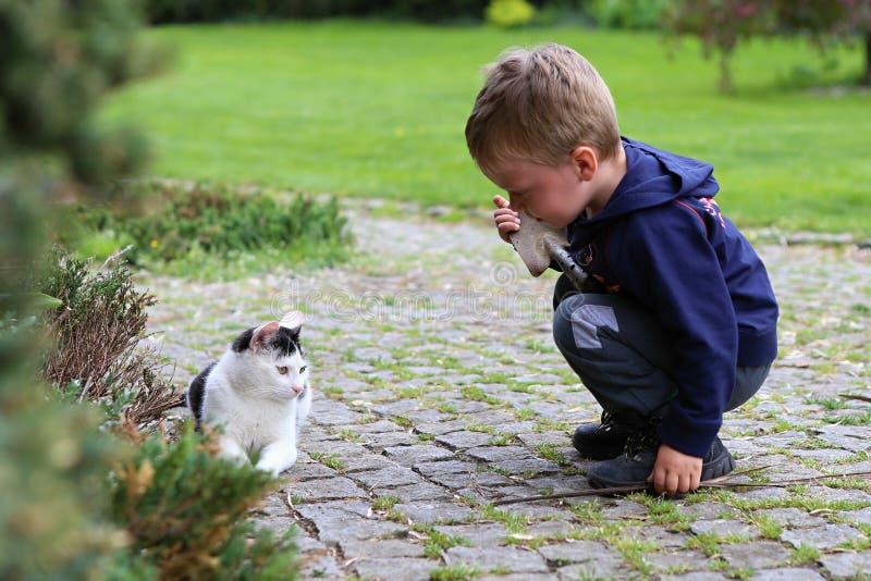 Garçon se mettant à genoux par le chat noir et blanc photo stock