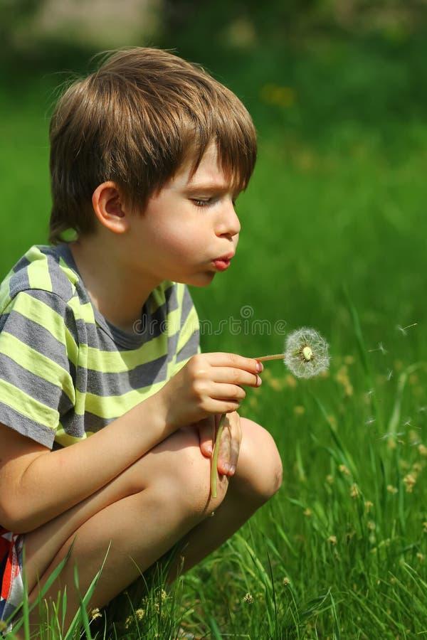 Garçon soufflant à une fleur de pissenlit dans le domaine photographie stock