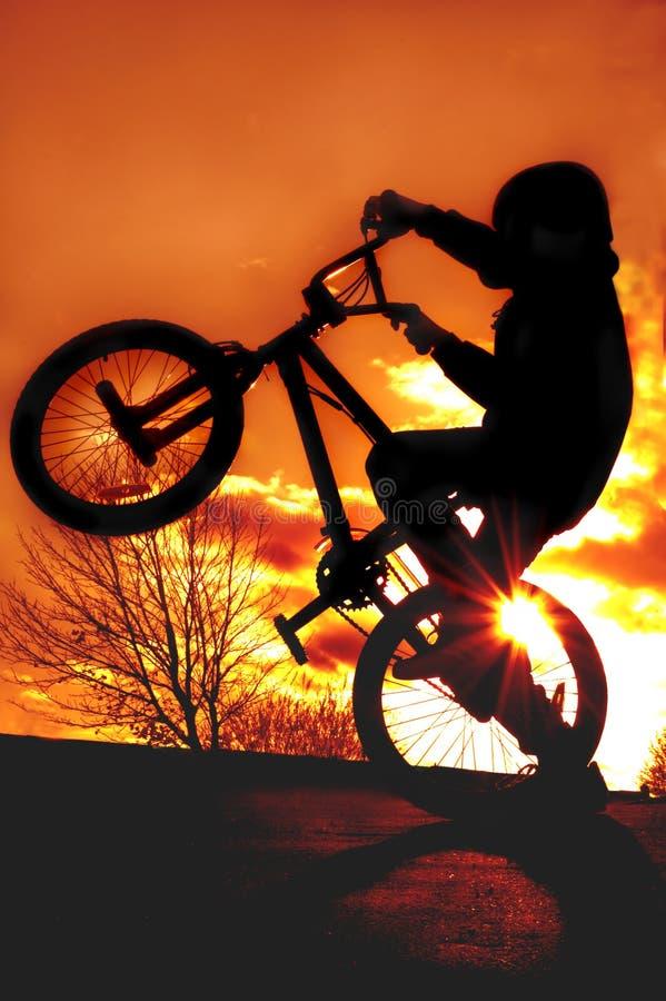 Garçon sur la silhouette de BMX photographie stock