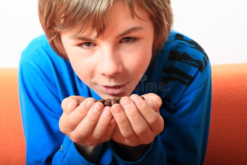 Garçon tenant des graines de café photo libre de droits