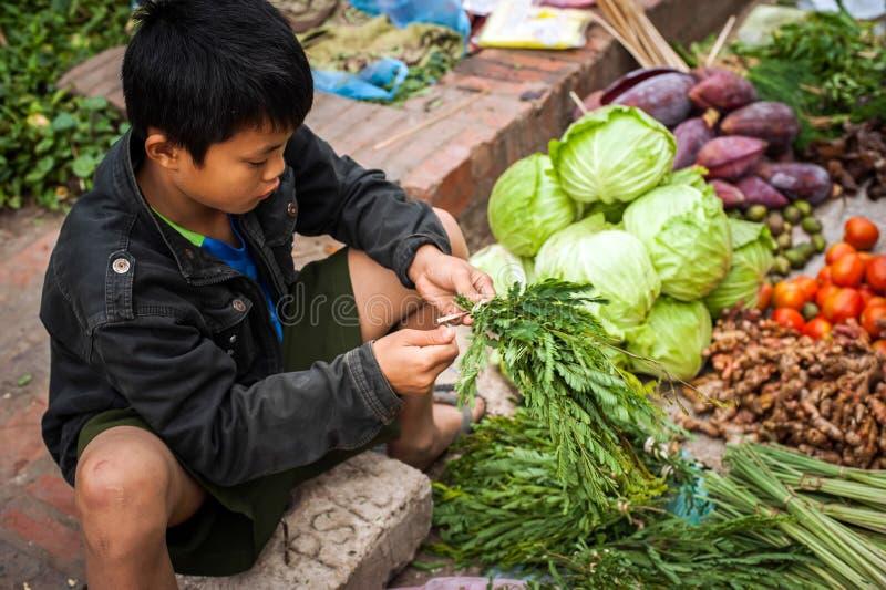 Garçon vendant le marché asiatique d'épicerie verte et de nourriture d'épices laos images stock