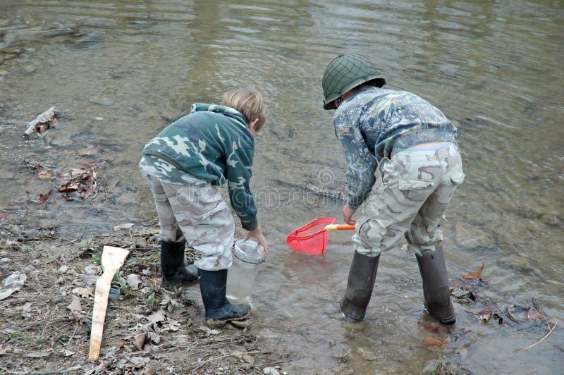 Garçons attrapant des grenouilles dans le flot image stock