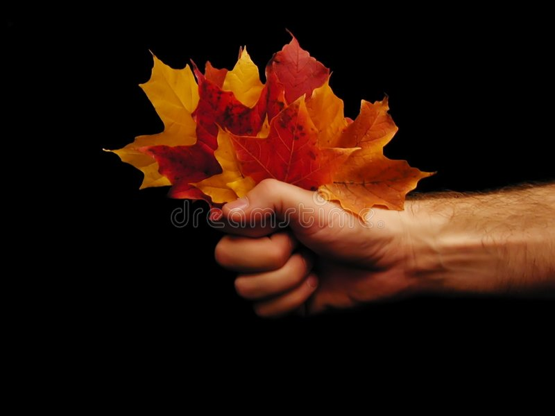 Garść jesienią