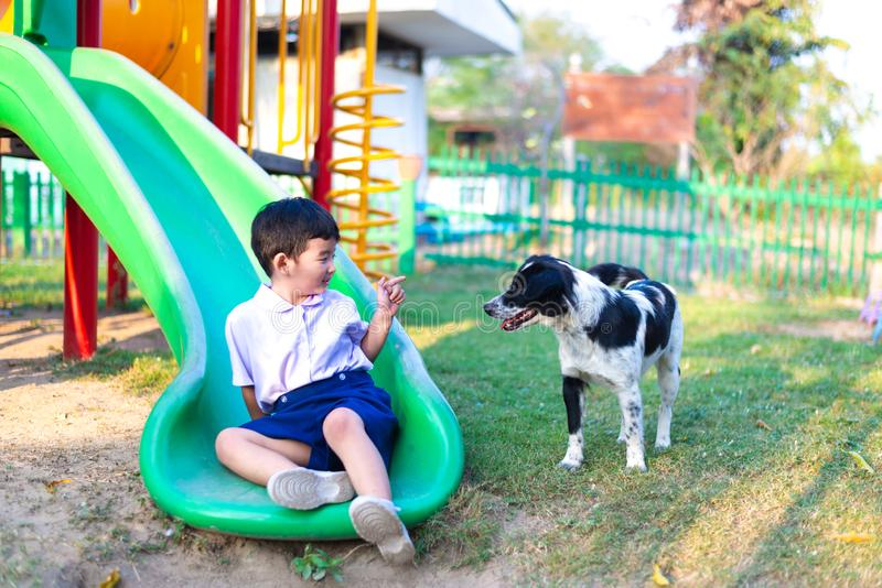 Gar?on asiatique jouant avec son chien dans le terrain de jeu sous la lumi?re du soleil image libre de droits