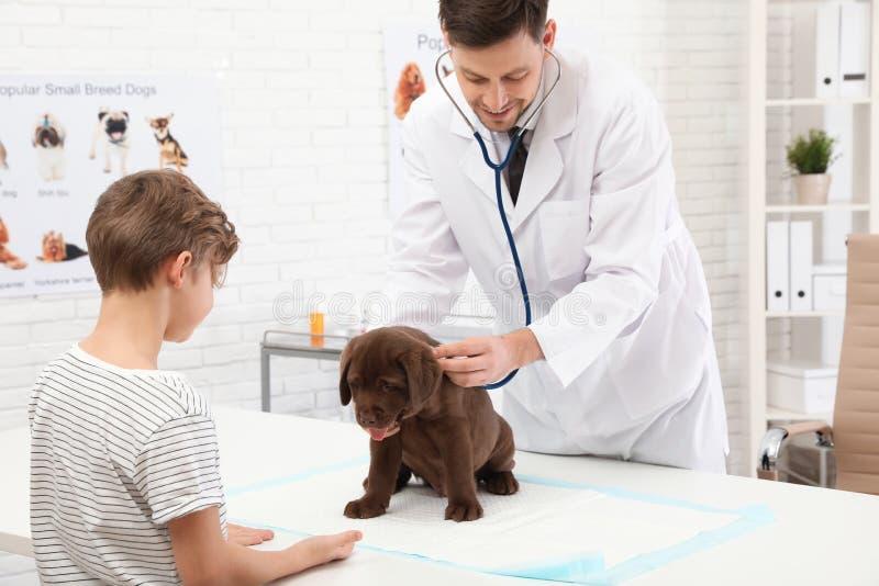Gar?on avec son v?t?rinaire de visite d'animal familier dans la clinique image stock