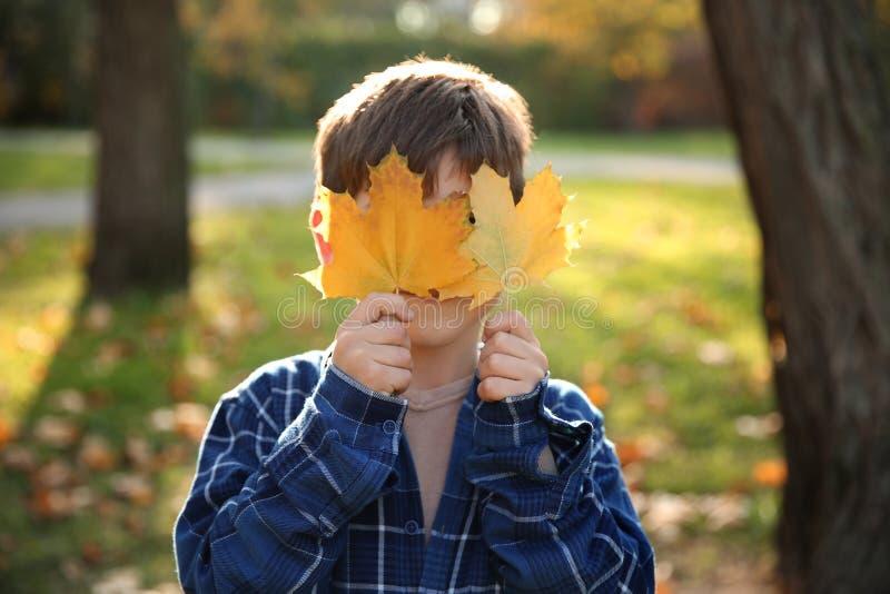 Gar?on mignon avec des lames en stationnement d'automne photographie stock