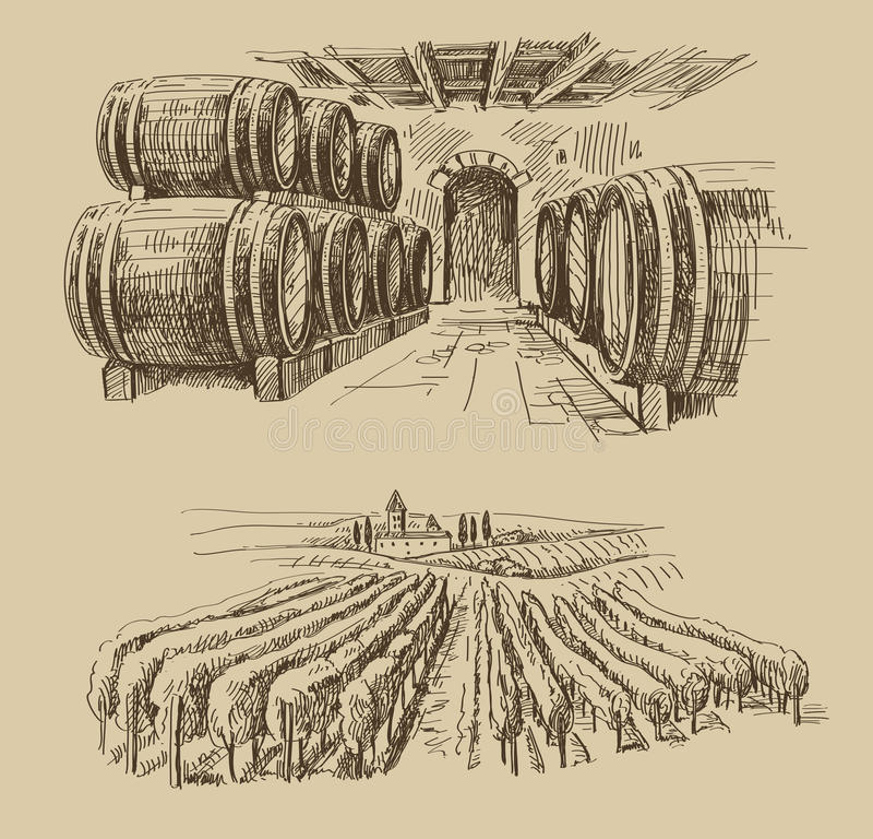 Garabato del viñedo libre illustration