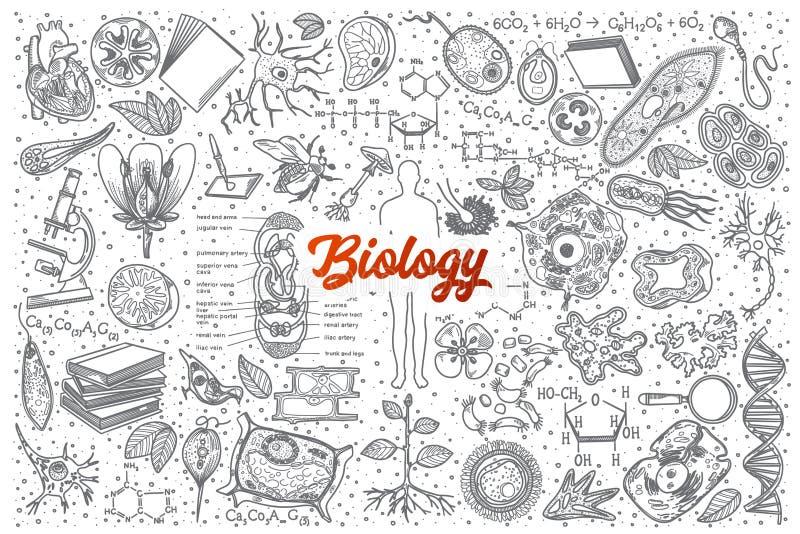 Garabato dibujado mano de la biología fijado con las letras stock de ilustración