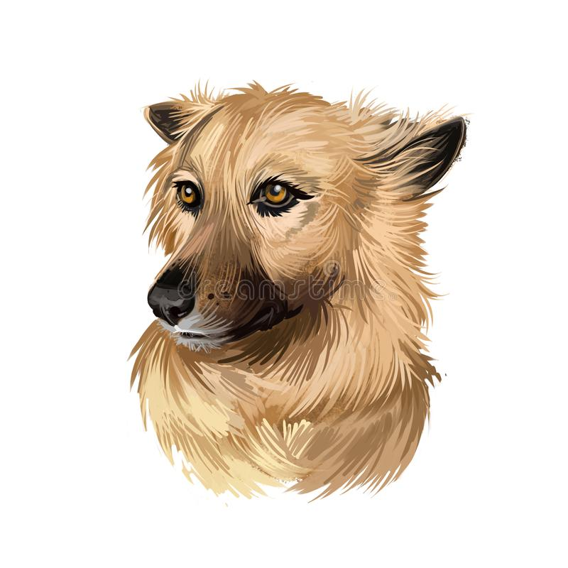 Garafian Shepherd dog breed digital art illustration isolated on white. Popular puppy portrait with text. Cute pet hand drawn royalty free illustration